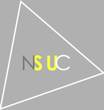 Natalie Su Company
